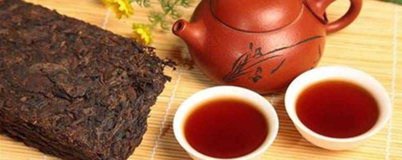 普耳茶的功效与作用食用方法
