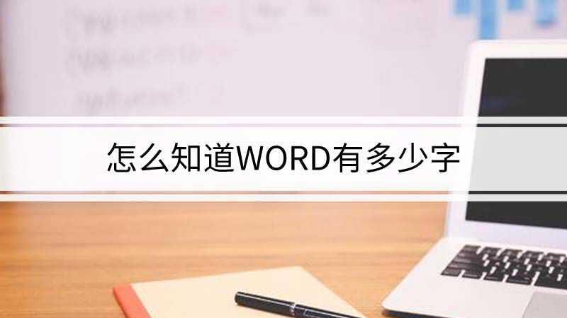 怎么知道word有多少字