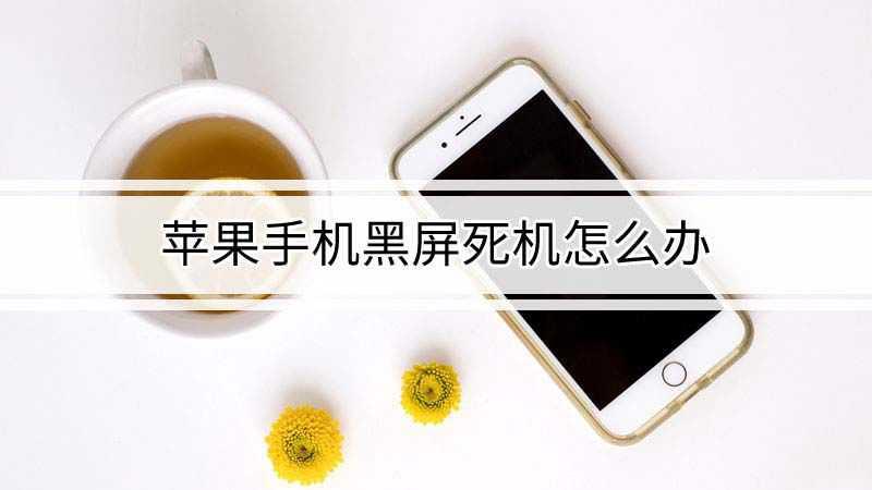苹果手机黑屏死机怎么办