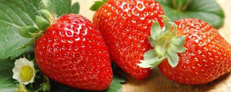 草莓如何洗才干净