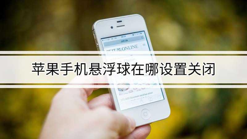 苹果8p手机悬浮球在哪设置关闭