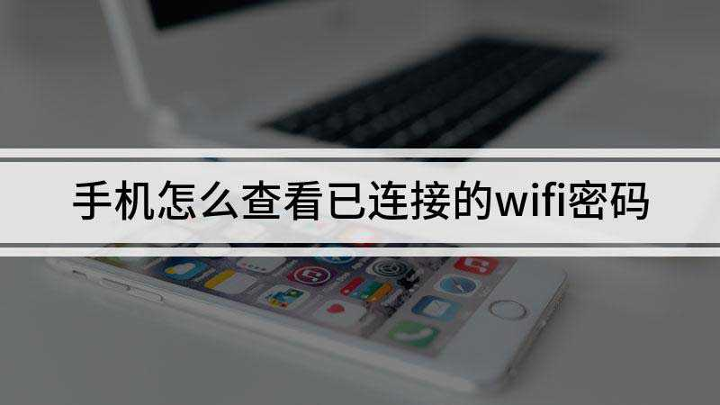 已连接的wifi怎么查看密码