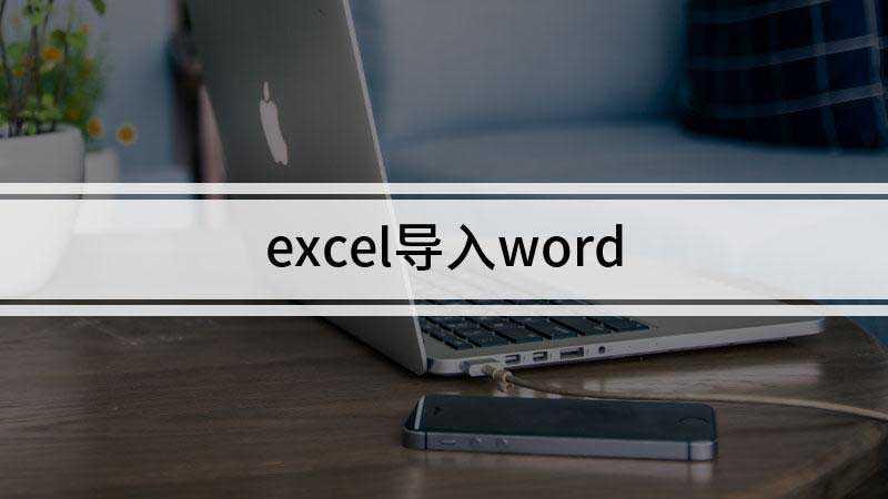 怎么把excel表格导入word