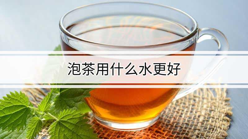 泡茶用什么水更好