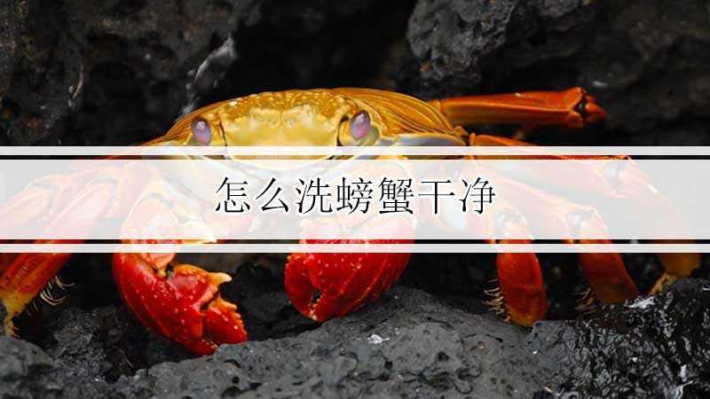 怎么洗螃蟹干净