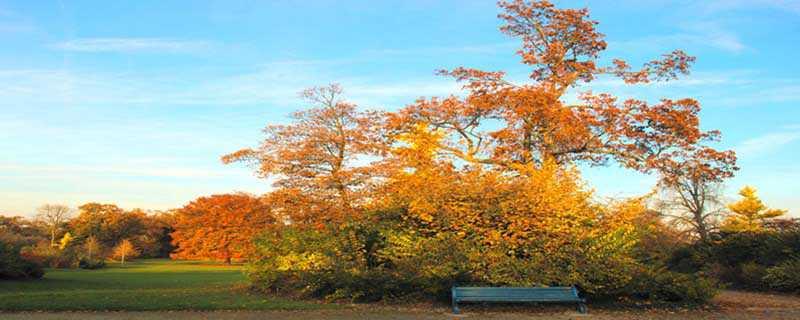 秋分是什么意思