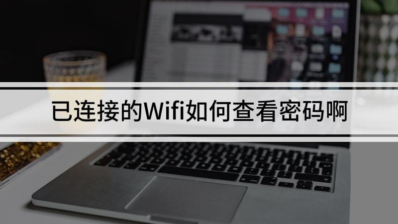 已连接的Wifi如何查看密码啊