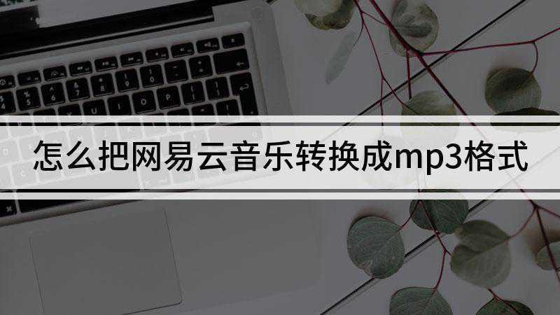 怎么把网易云音乐转换成mp3格式
