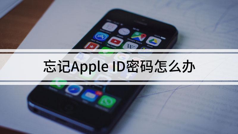 忘记Apple ID密码怎么办