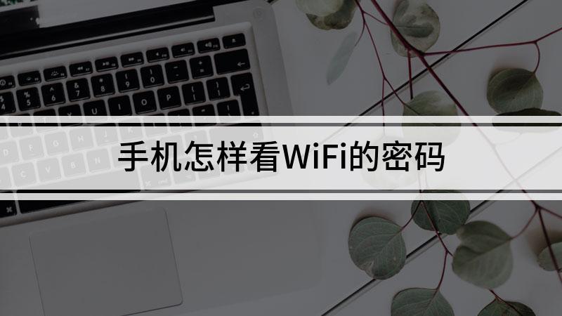 手机怎样看WiFi的密码