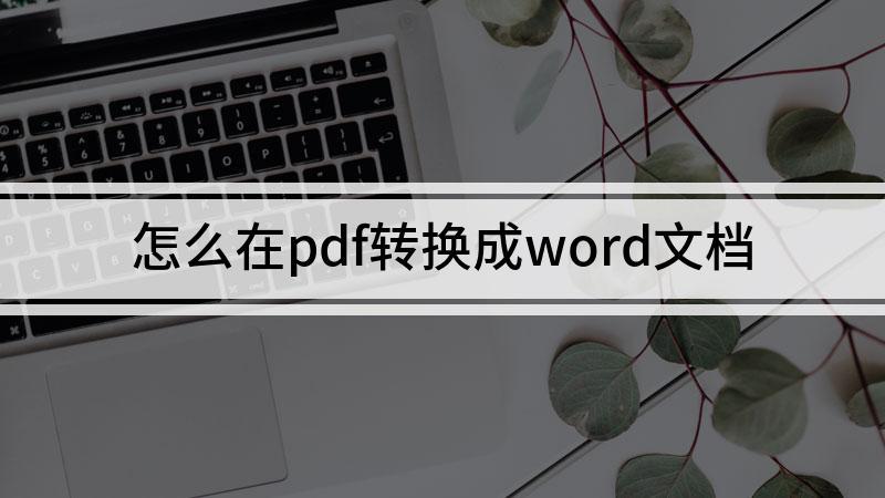 怎么在pdf转换成word文档