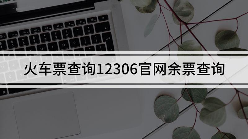 火车票查询12306官网余票查询