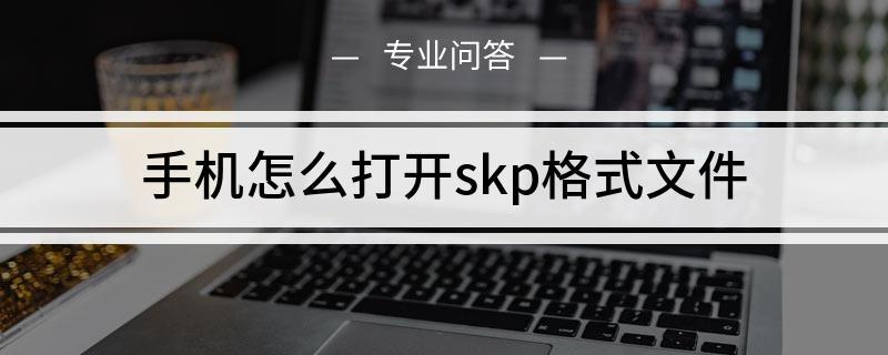 手机怎么打开skp格式文件