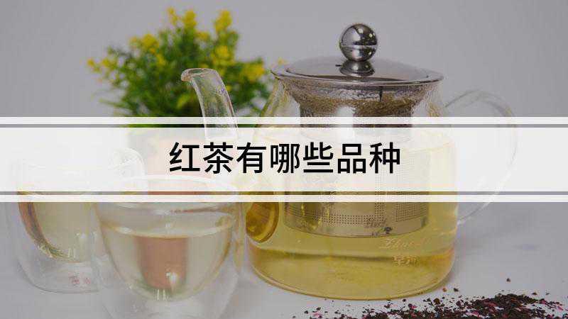 红茶有哪些品种