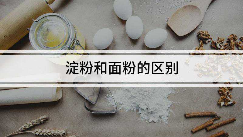 淀粉和面粉的区别