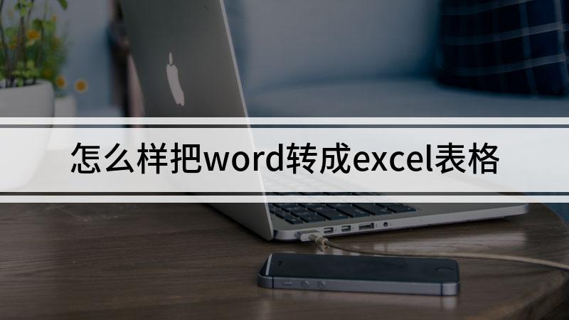 怎么样把word转成excel表格