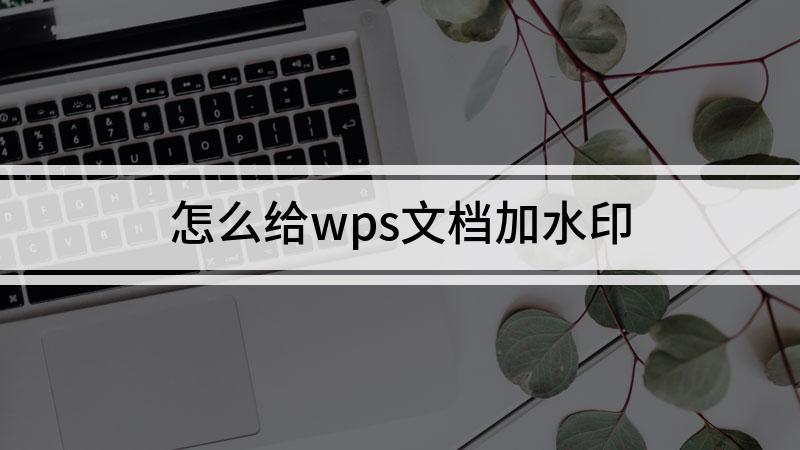 怎么给wps文档加水印