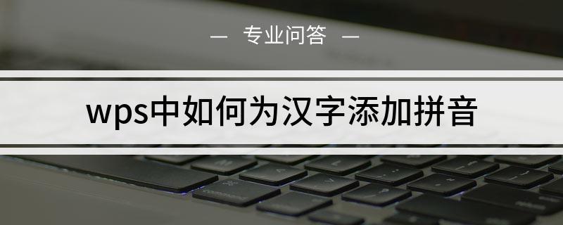 wps中如何为汉字添加拼音