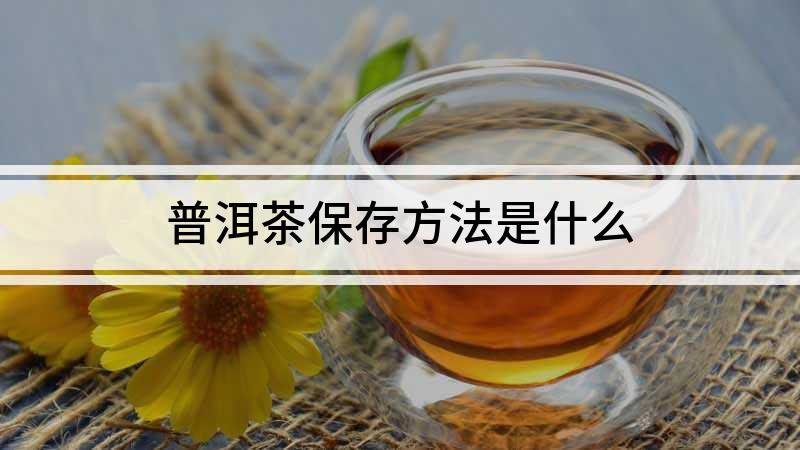 普洱茶保存方法是什么