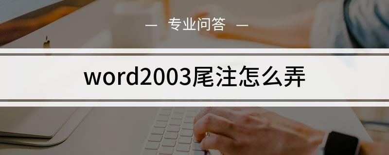 word2003尾注怎么弄