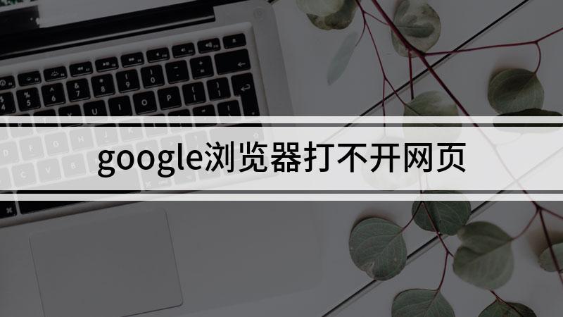 google浏览器打不开网页