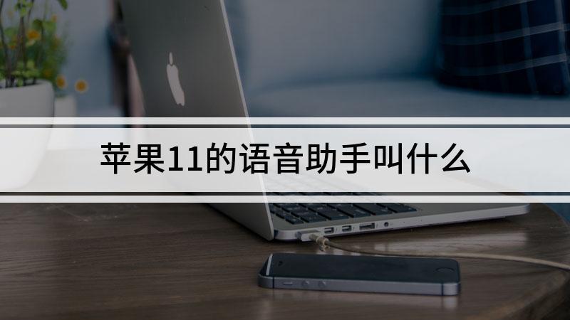 苹果11的语音助手叫什么