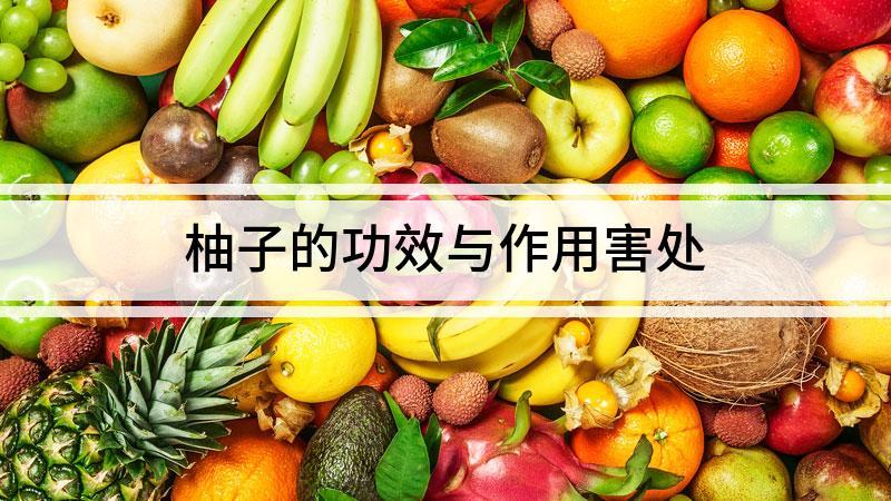 柚子的功效与作用害处