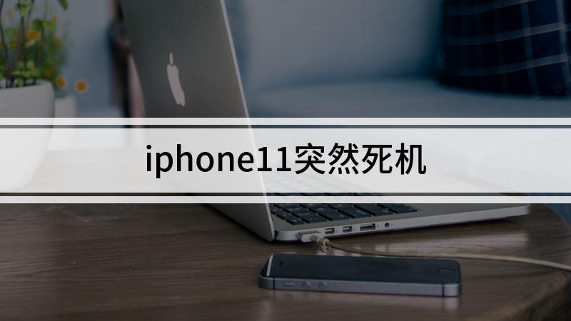 iphone11突然死机