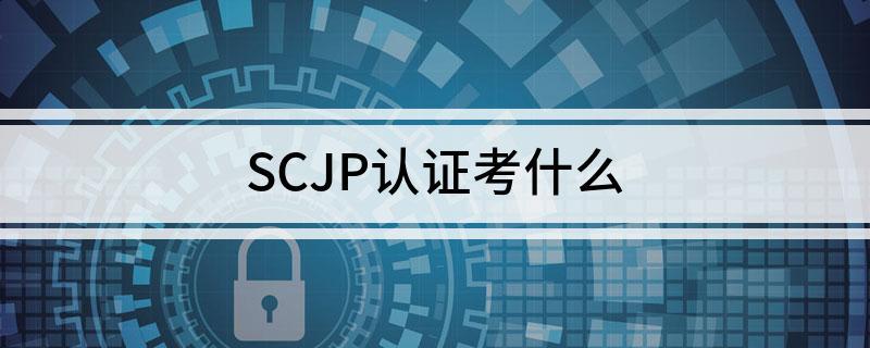 SCJP认证考试具体考什么东西