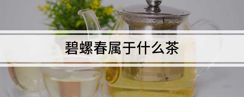 碧螺春屬于什么茶