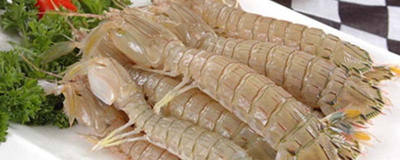 活濑尿虾怎么清洗