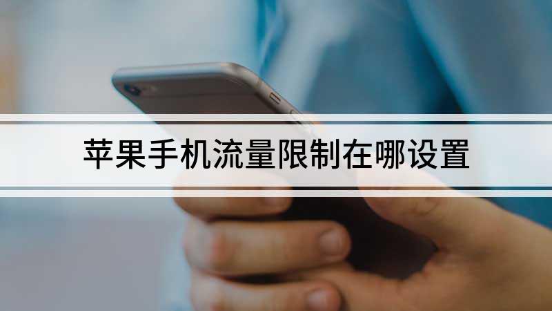 苹果手机流量限制在哪设置