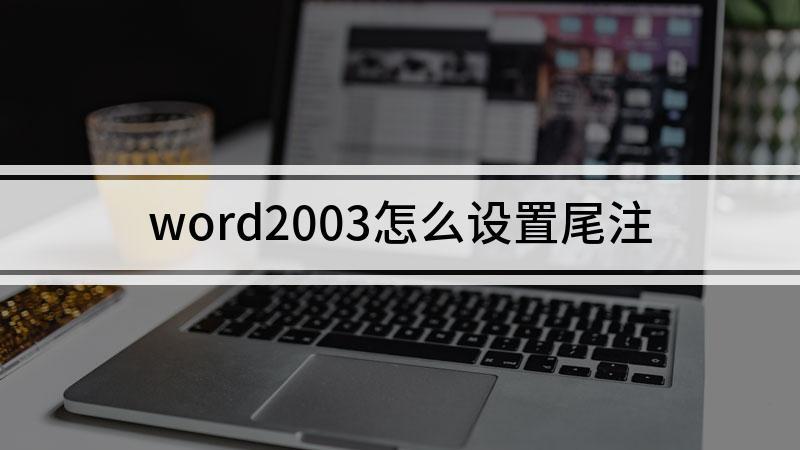 word2003怎么设置尾注