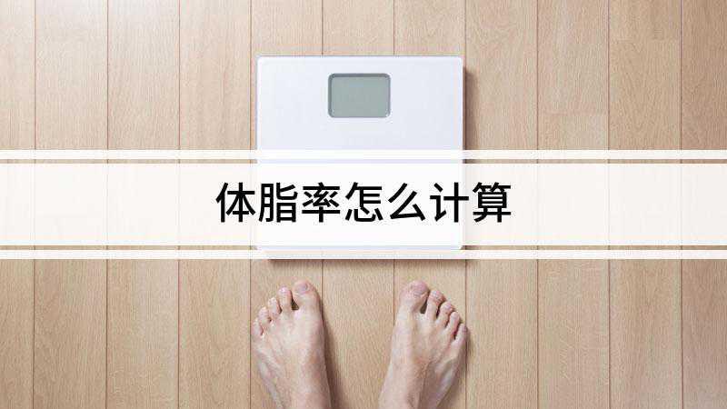 体脂率怎么计算
