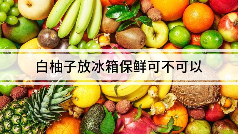 白柚子放冰箱保鲜可不可以