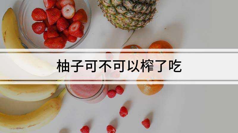 柚子可不可以榨了吃