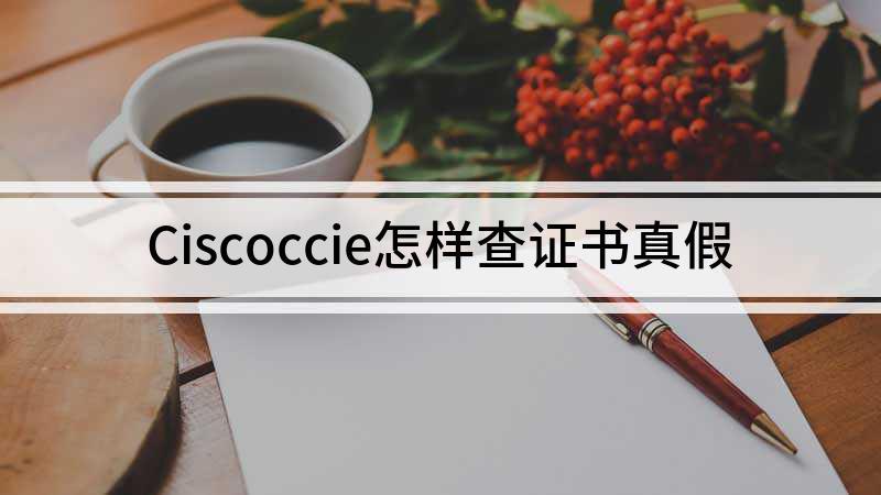 Ciscoccie怎样查证书真假