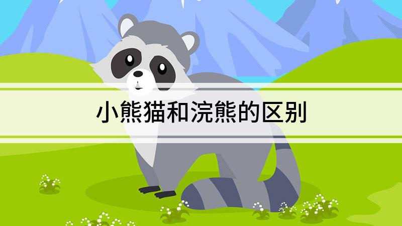 小熊猫和浣熊的区别