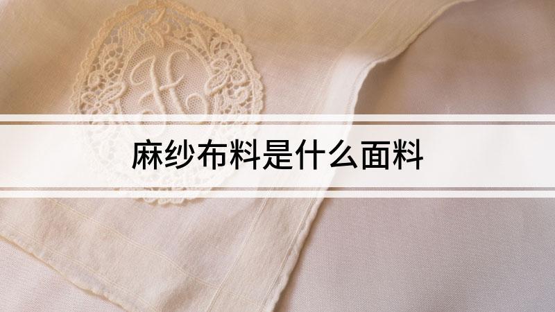 麻纱布料是什么面料
