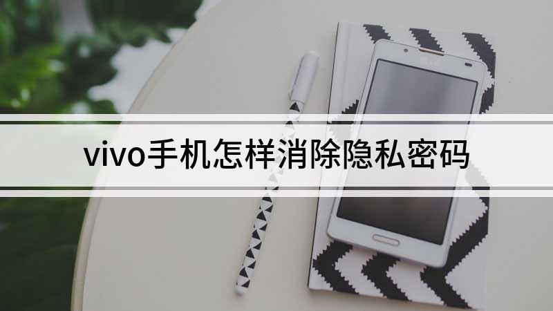 vivo手機怎樣消除隱私密碼