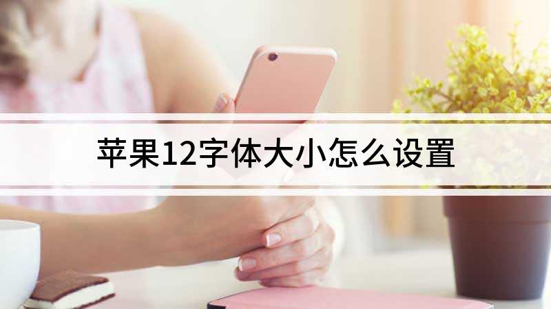 蘋果12字體大小怎么設置