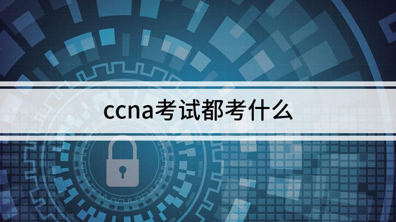 ccna考试都考什么
