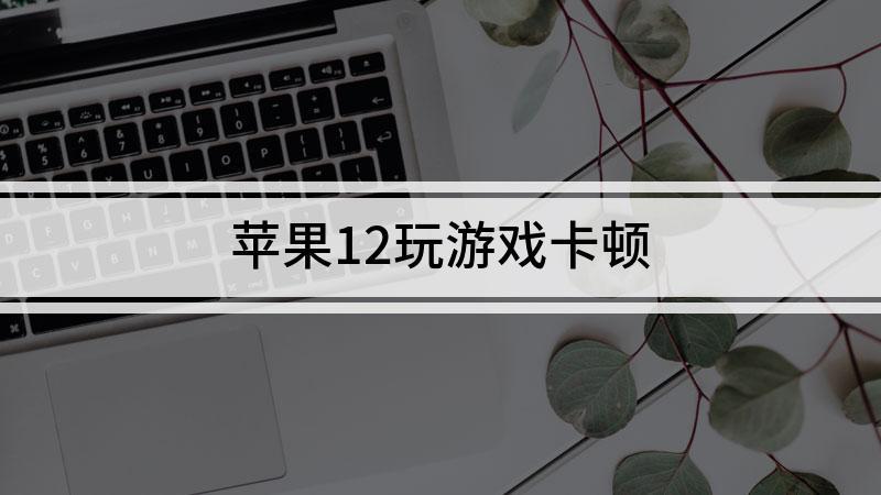 苹果12玩游戏卡顿