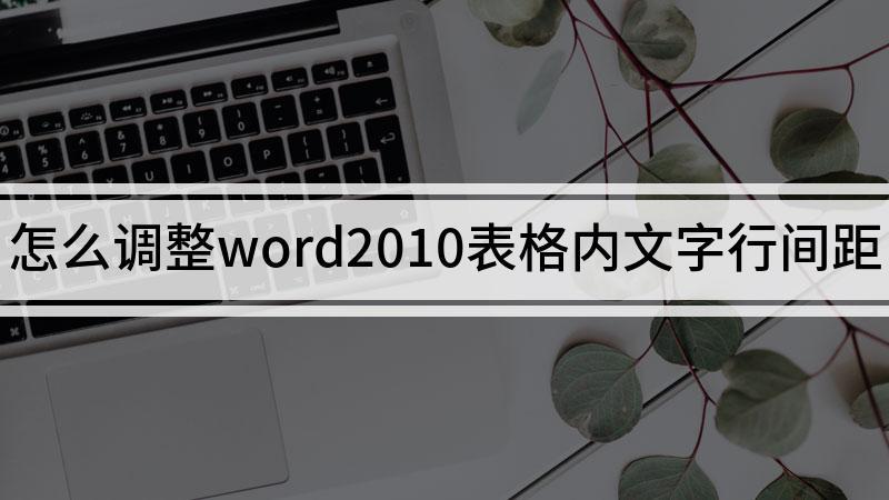 怎么调整word2010表格内文字行间距