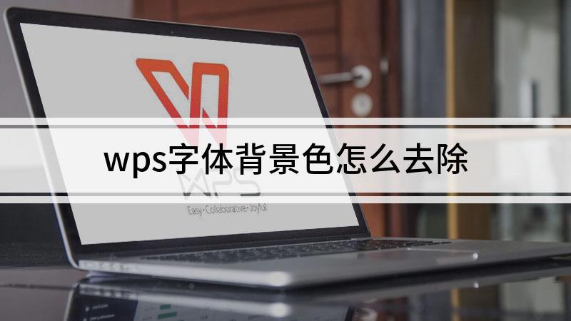 wps字体背景色怎么去除