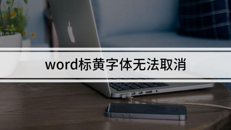 word标黄字体无法取消