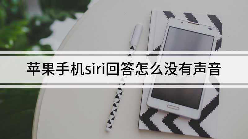 苹果手机siri回答怎么没有声音