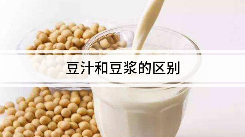 豆汁和豆浆的区别