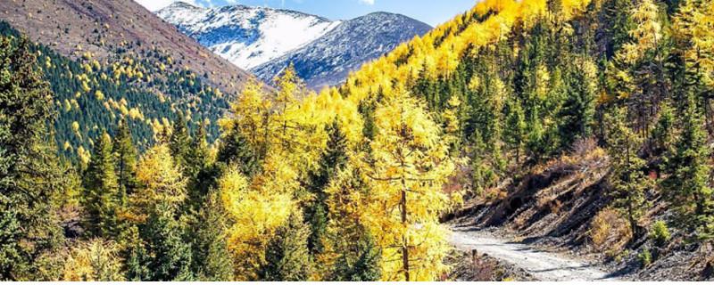 中国最美景观大道是从哪里到西藏