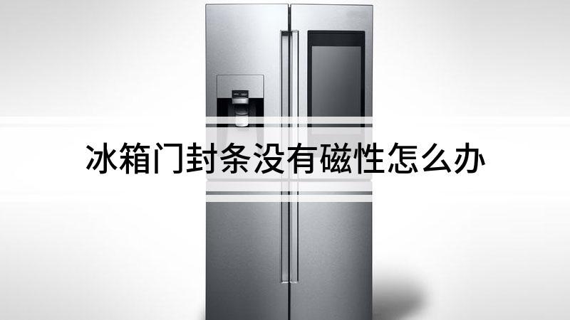 冰箱门封条没有磁性怎么办